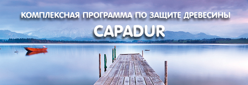 capadur_act_header_new.jpg
